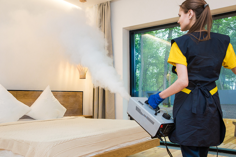 Pest-Proofing your Home to Common Household Bugs